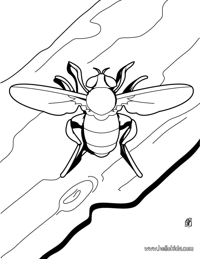 Biene Zum Ausmalen Zum Ausmalen - De.hellokids mit Biene Zum Ausmalen