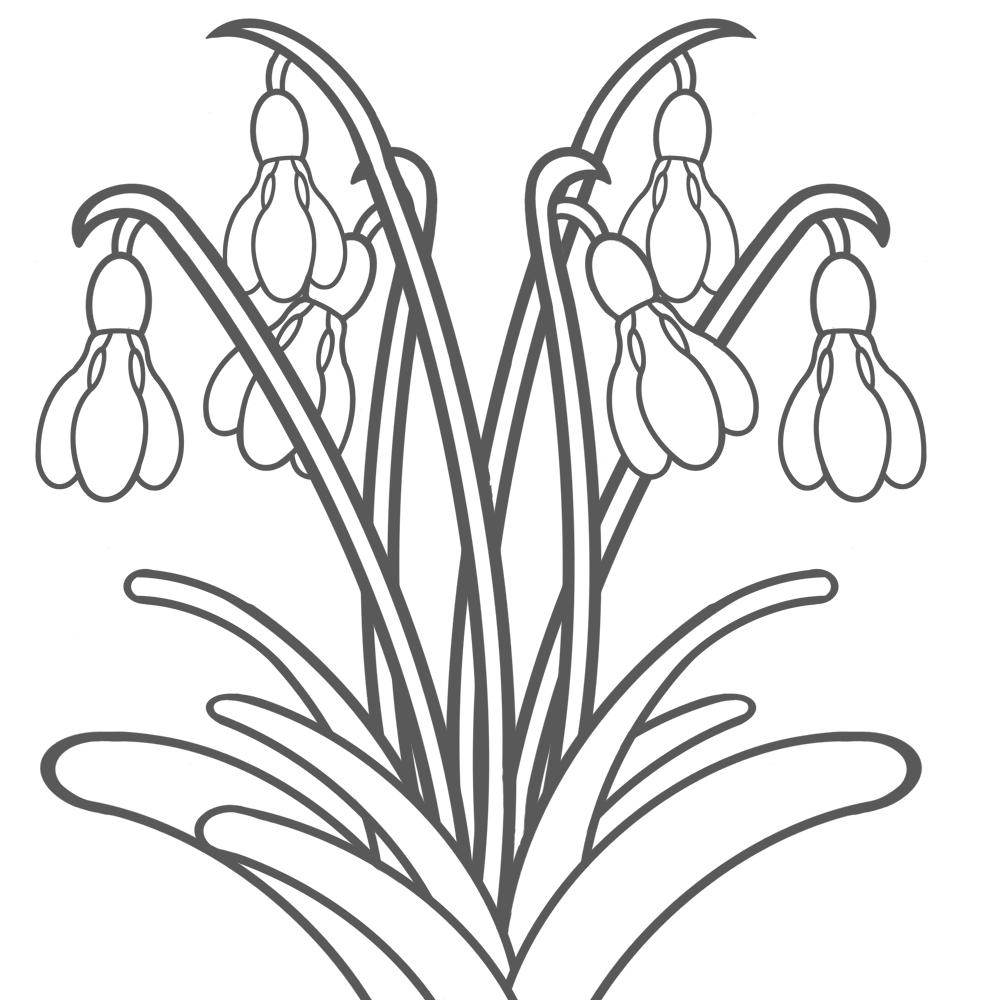 Bildergebnis Für Malvorlagen Frühblüher Kostenlos (Mit für Ausmalbilder Frühlingsblumen