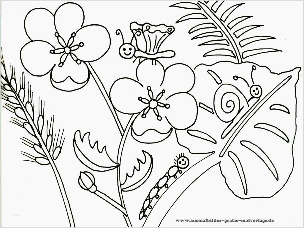 Blumen Vorlagen Zum Ausdrucken Kostenlos - Malvorlagen Für in Blumenbilder Zum Ausmalen