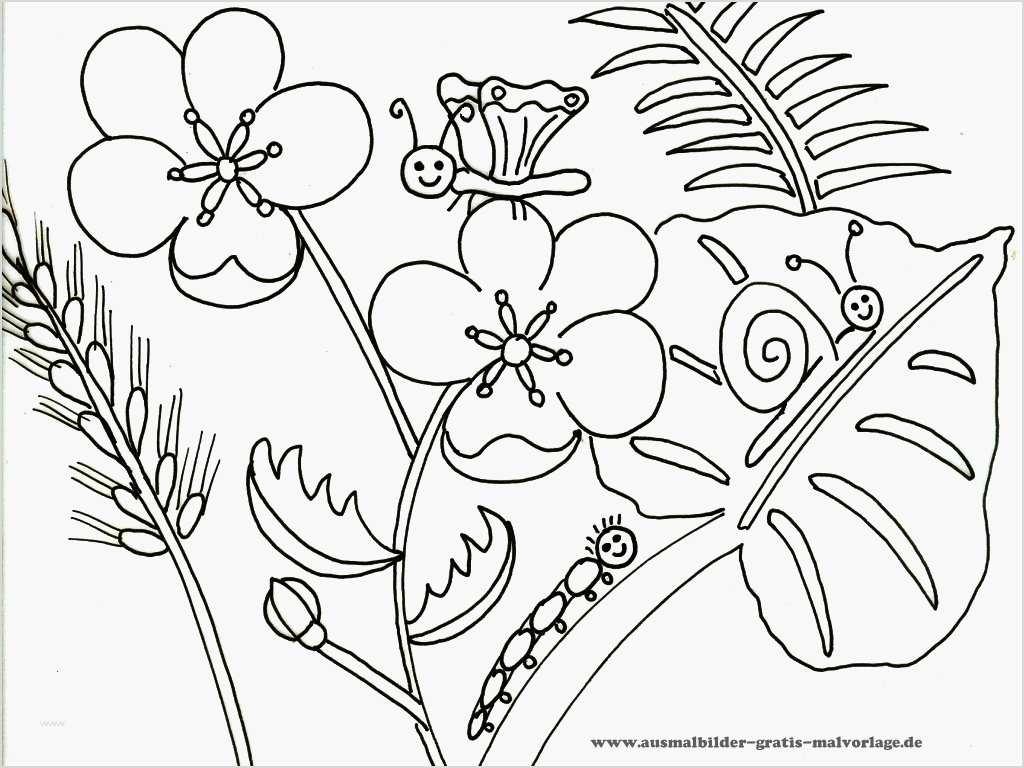 Blumen Vorlagen Zum Ausdrucken Kostenlos - Malvorlagen Für mit Blumen Ausmalbilder Gratis