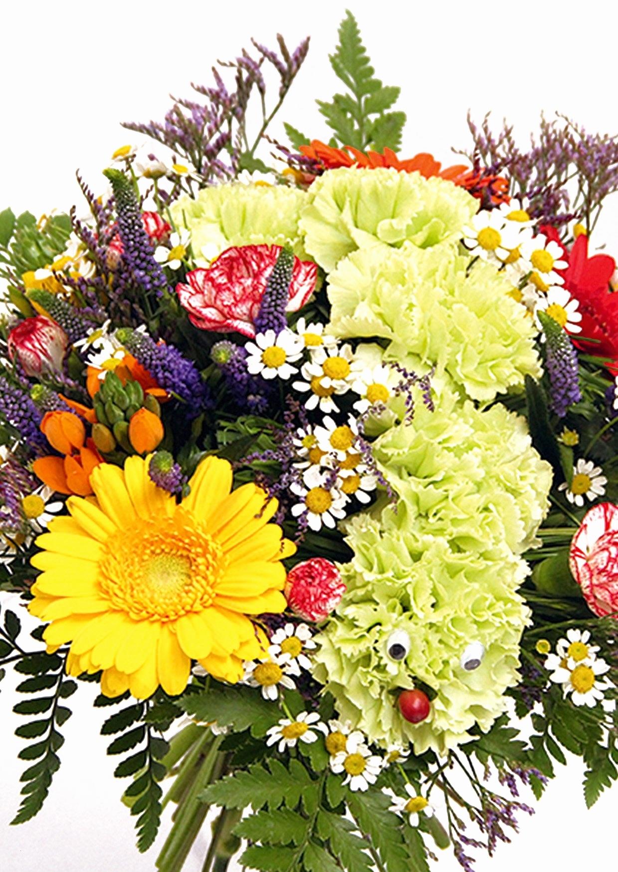 Blumenbilder Kostenlos Herunterladen Best 69 Besten Natur ganzes Blumenbilder Kostenlos Herunterladen