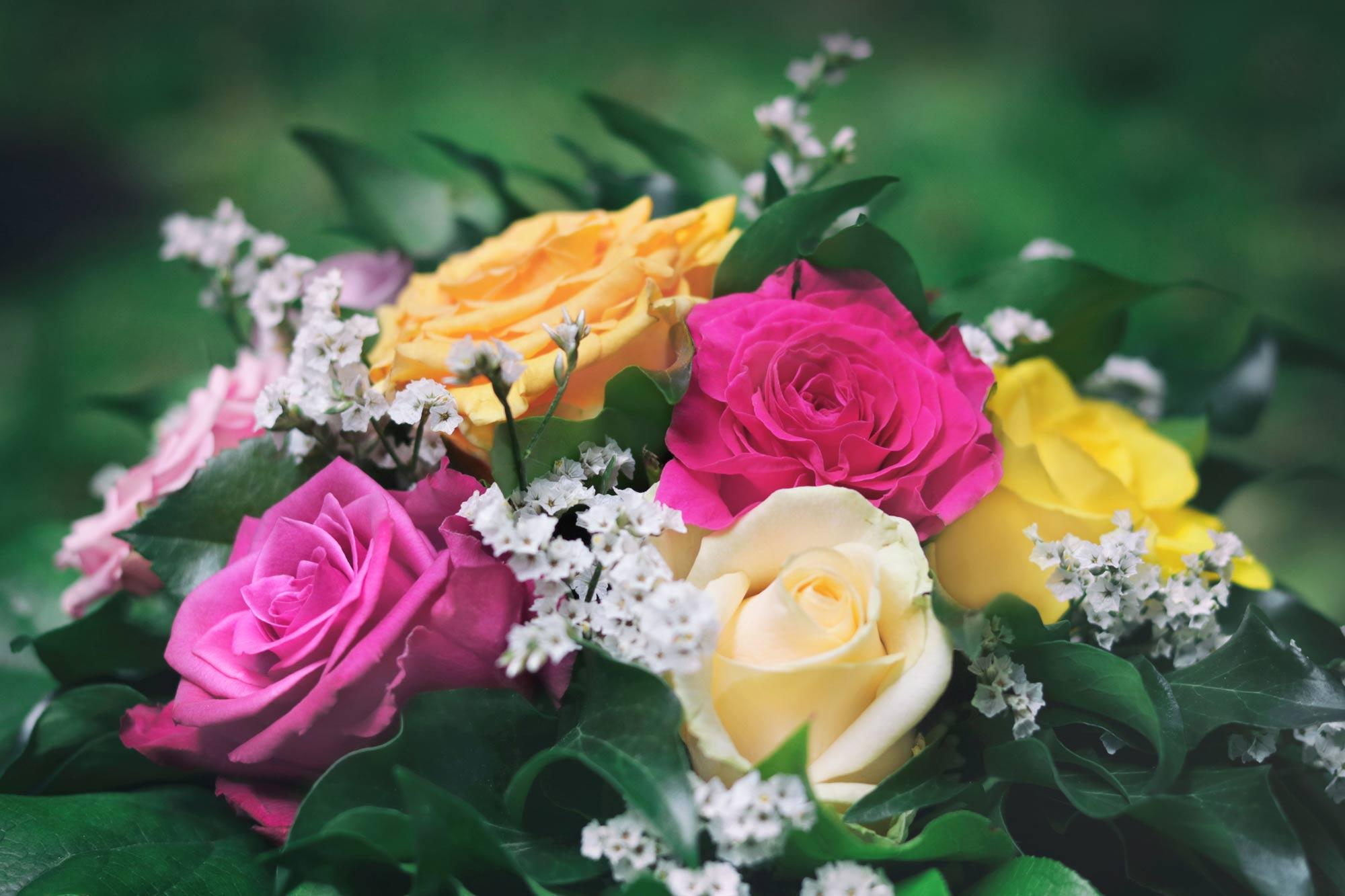 Blumenstrauß Rosen - Kostenlose Bilder Download | Titania Foto für Blumenbilder Kostenlos Herunterladen