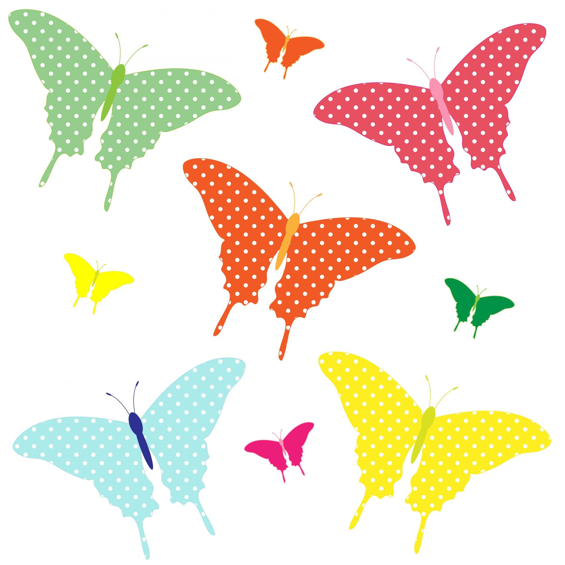 Bunte Schmetterlinge Clipart Kostenloses Stock Bild - Public für Schmetterlinge Clipart