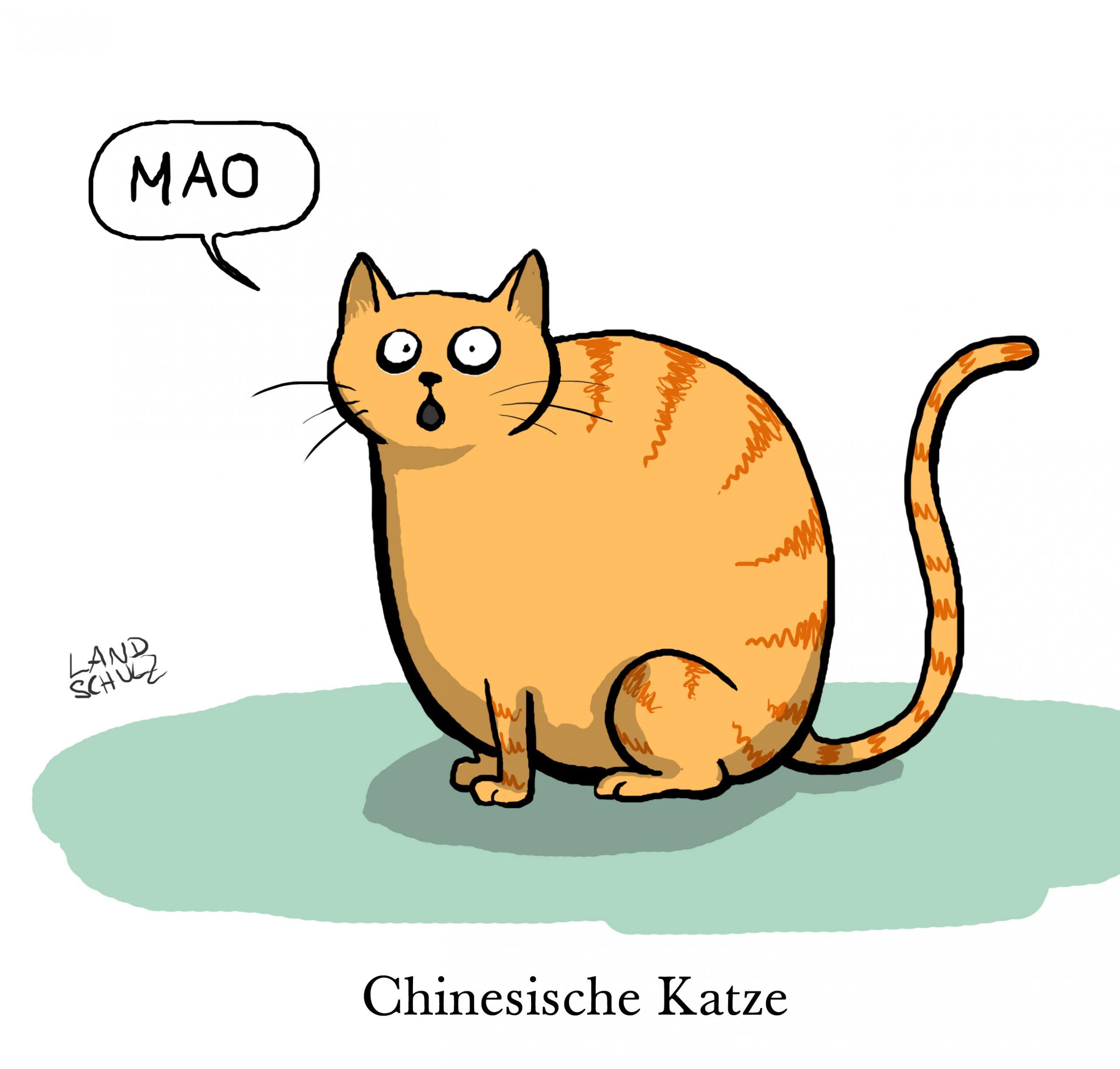 Cartoons Über Katzen bei Katzenbilder Comic