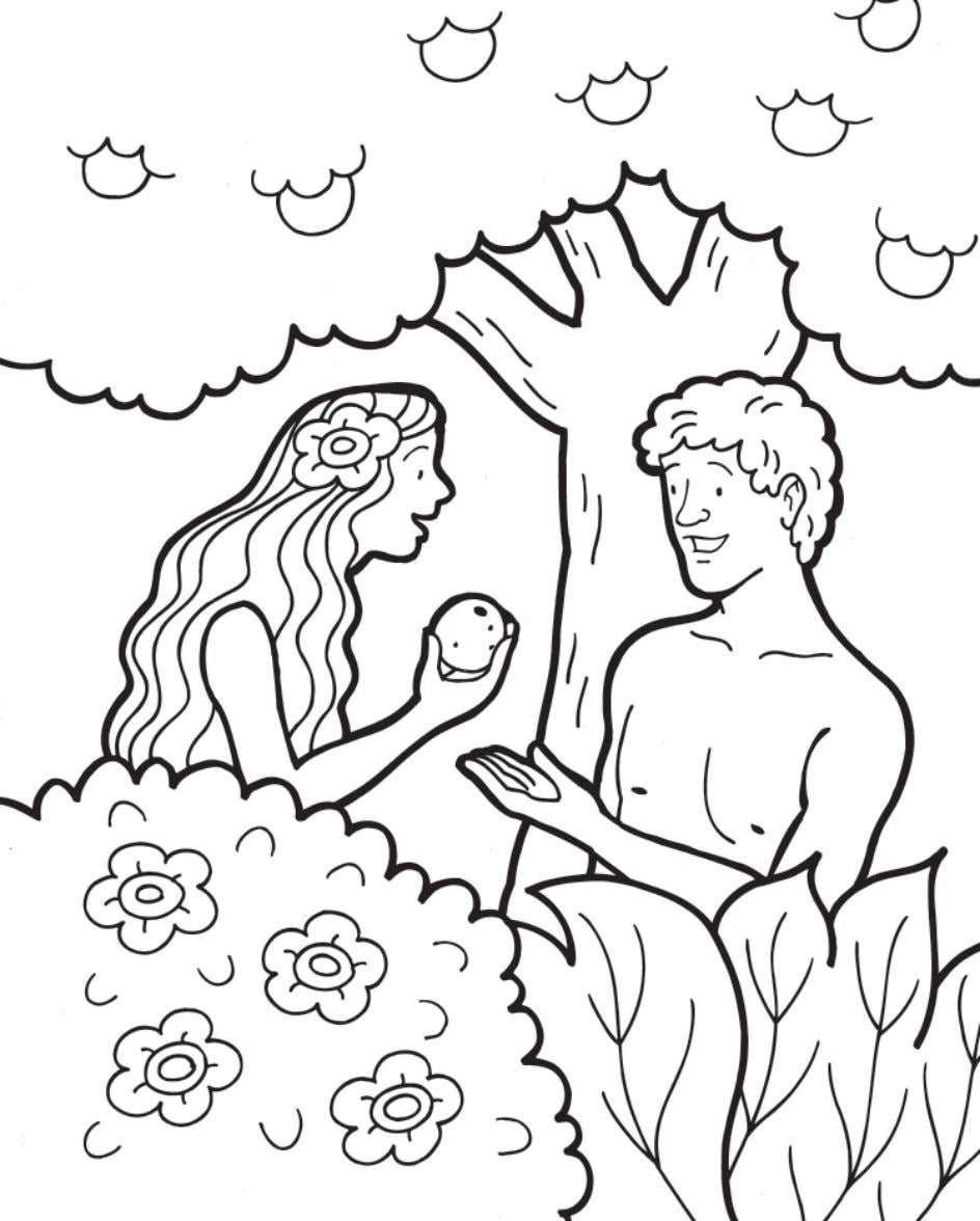 Colorearhistoriasalvacion Em 2020 | Desenhos Biblicos verwandt mit Malvorlage Adam Und Eva