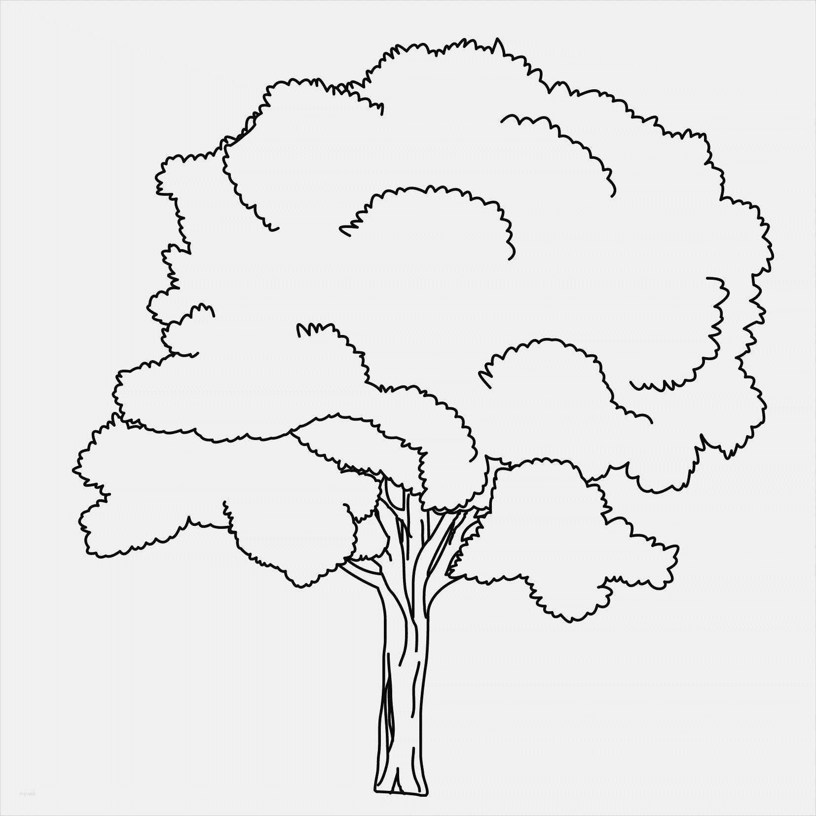 Coole Ausmalbilder Zum Ausdrucken In 2020   Ausmalbilder über Malvorlagen Bäume Zum Ausdrucken