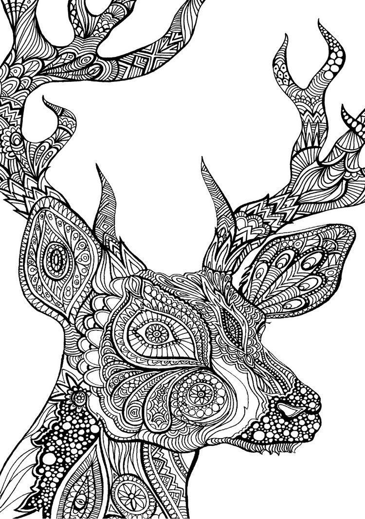 coole ausmalbilder zum ausdrucken | malvorlagen tiere