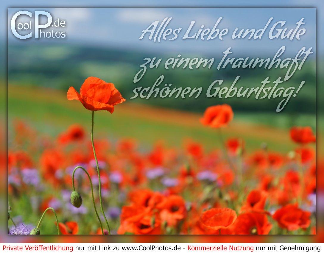 Coolphotos.de - Alles Liebe Und Gute Zu Einem Traumhaft bei Schöne Bilder Zum Geburtstag