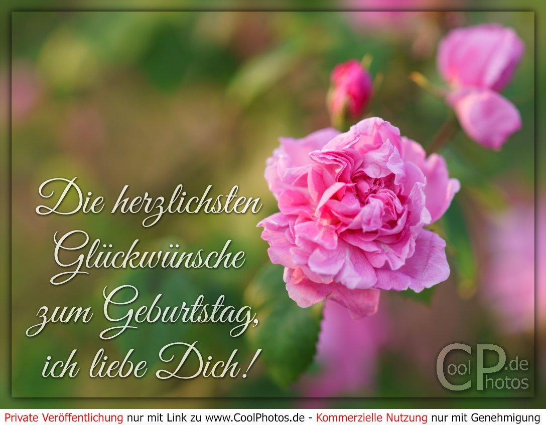 Coolphotos.de - Die Herzlichsten Glückwünsche Zum Geburtstag für Geburtstags Grußkarten Kostenlos