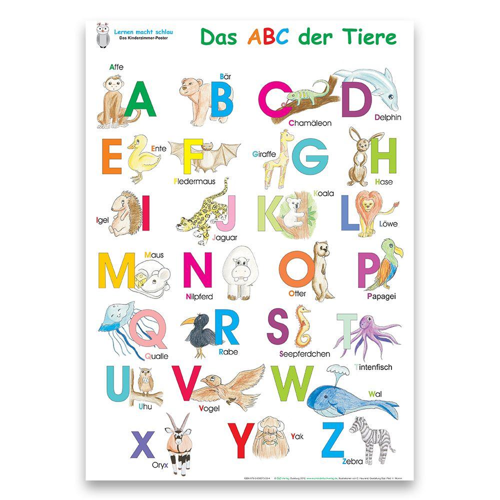 Das Abc Der Tiere + Meine Tierischen Zahlen für Tier Mit C Als Anfangsbuchstabe