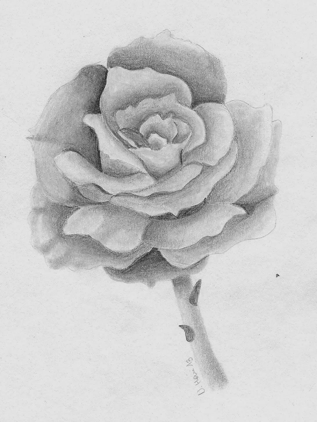 Das Buchgelaber: [Gemalt] Die Rose, Die Erdbeeren Und ganzes Rosen Bilder Gemalt