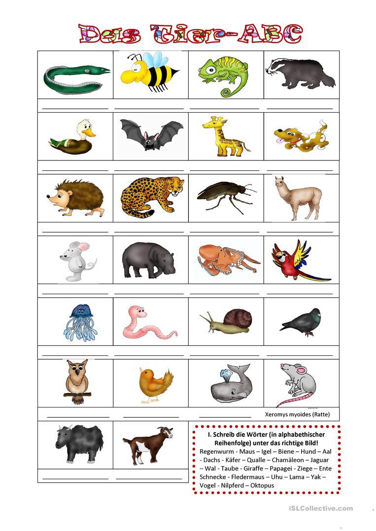 Das Tier-Abc - Deutsch Daf Arbeitsblatter bestimmt für Tiere Mit Anfangsbuchstaben A