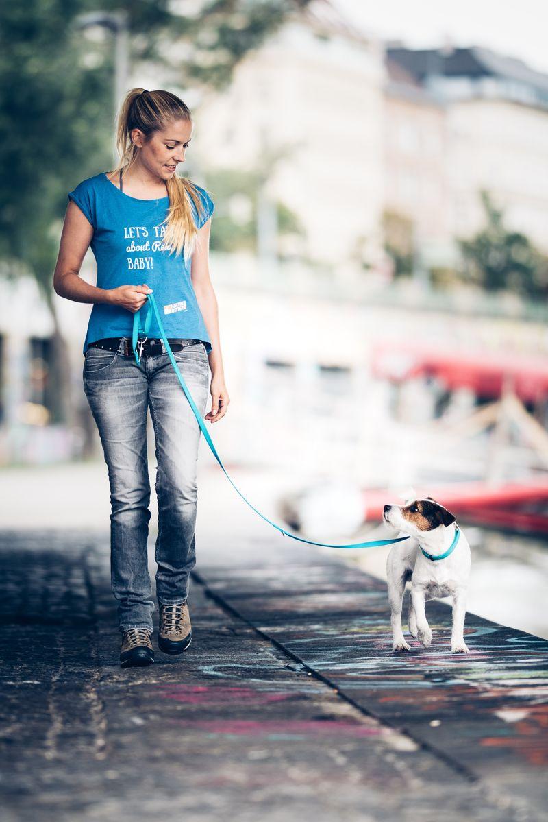 Dein Hund Zieht An Der Leine? - Martin Rütter Dogs Wien mit Hund Zieht Stark An Der Leine Was Tun