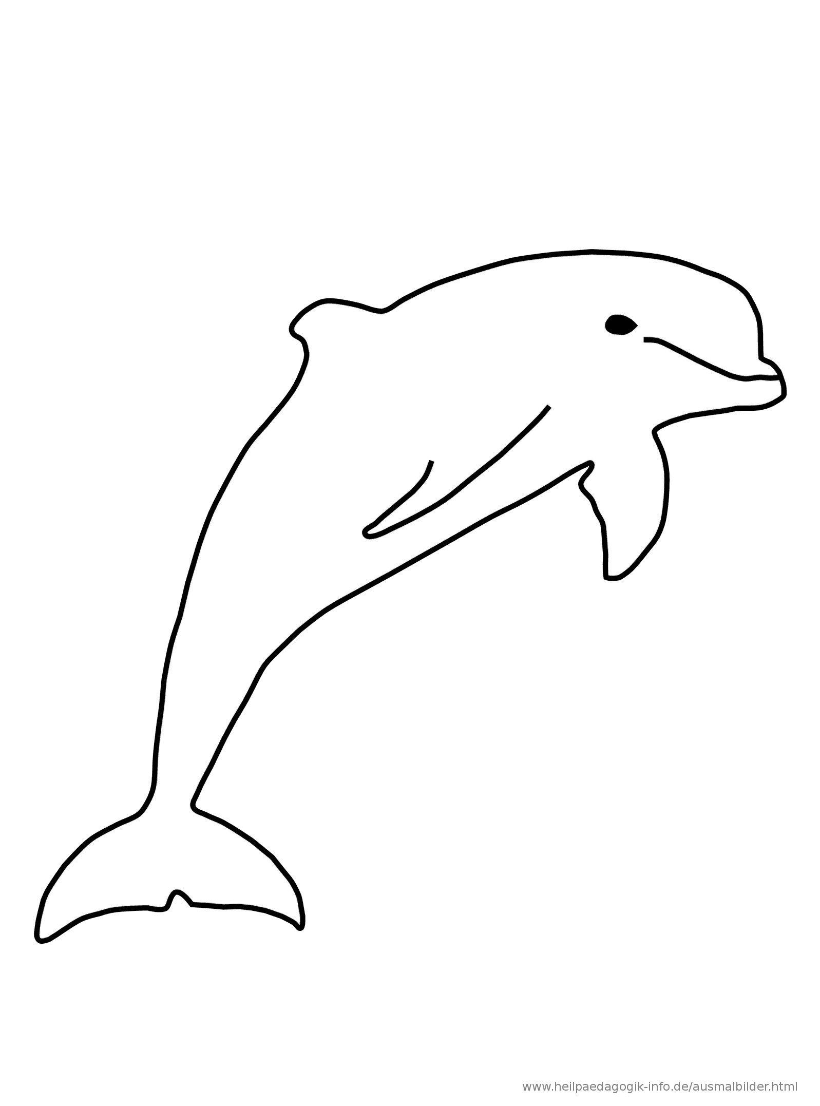 Delfin Ausmalbild | Ausmalbilder Delfine bei Delfin Ausmalbilder Zum Ausdrucken