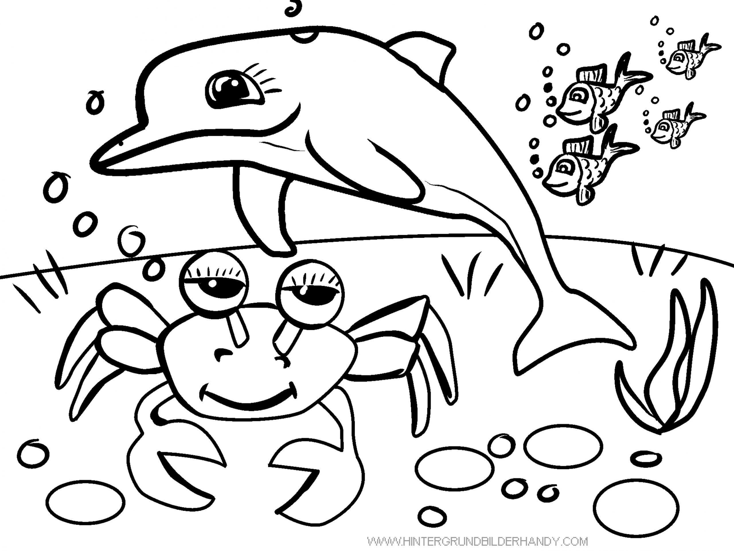Delfin Und Krebs – Unterwasser – Ausmalbilder Zum Ausdrucken über Ausmalbilder Unterwasserwelt
