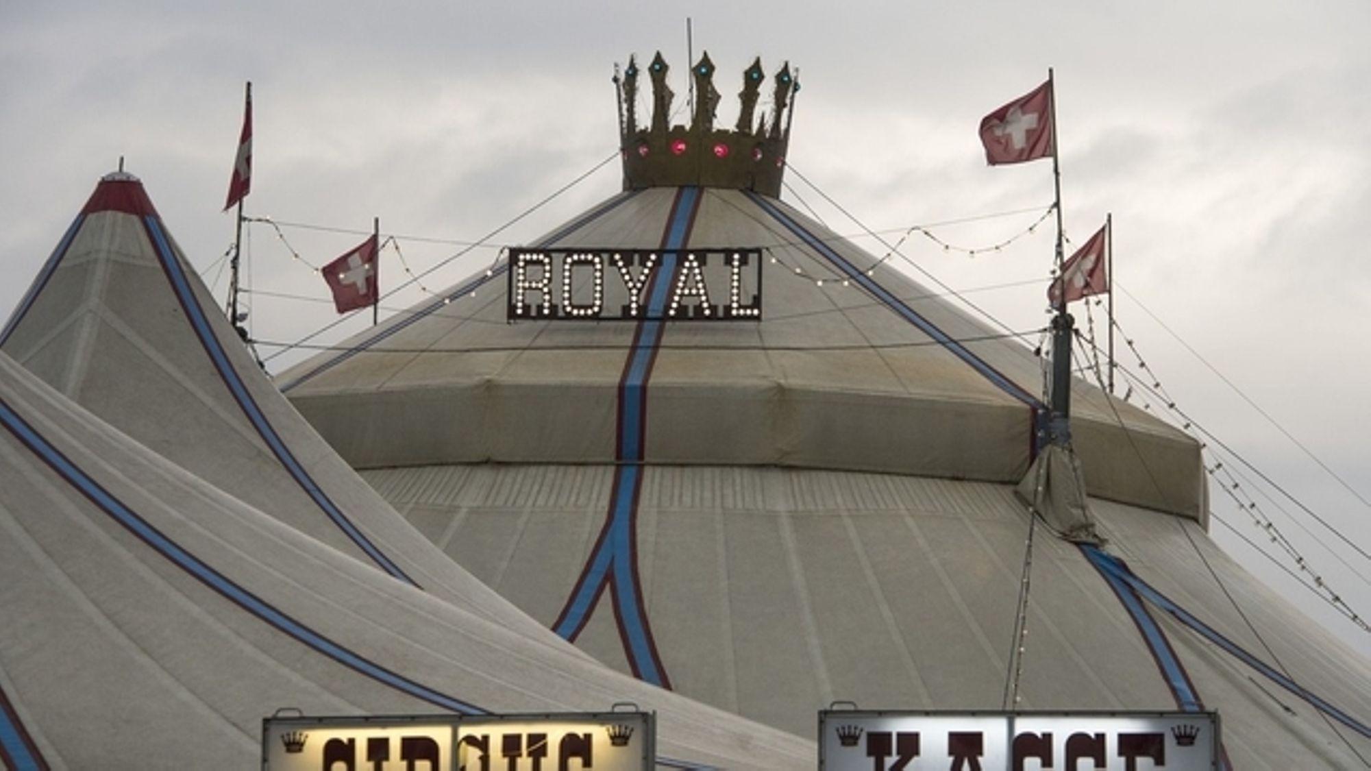 Der Circus Royal Ist Schon Wieder Pleite | Tages-Anzeiger über Schweizer Zirkus Kreuzworträtsel