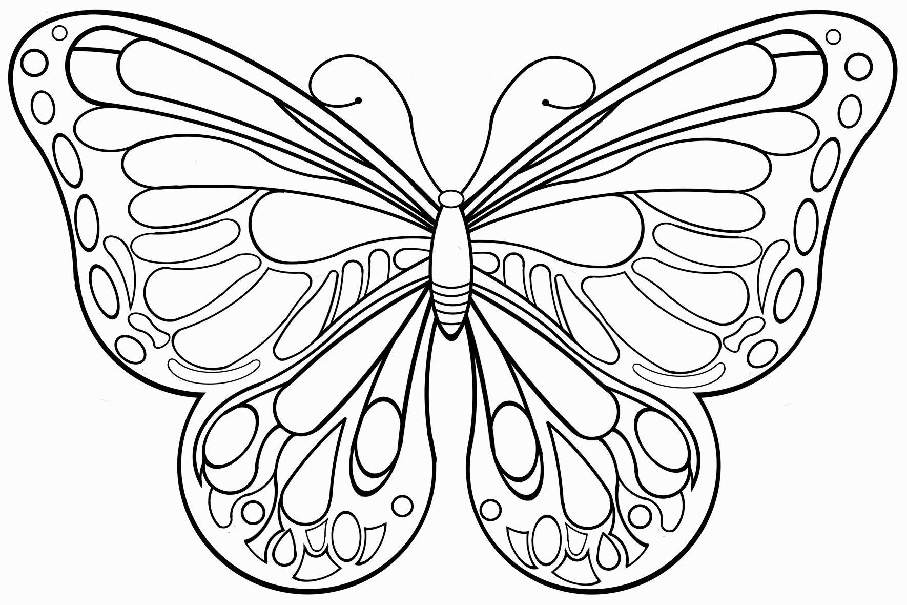 Die Besten 20 Schmetterlinge Ausmalbilder (Mit Bildern bestimmt für Schablone Schmetterling Kostenlos