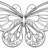 Die Besten 20 Schmetterlinge Ausmalbilder | Schmetterling ganzes Schmetterling Zum Ausdrucken