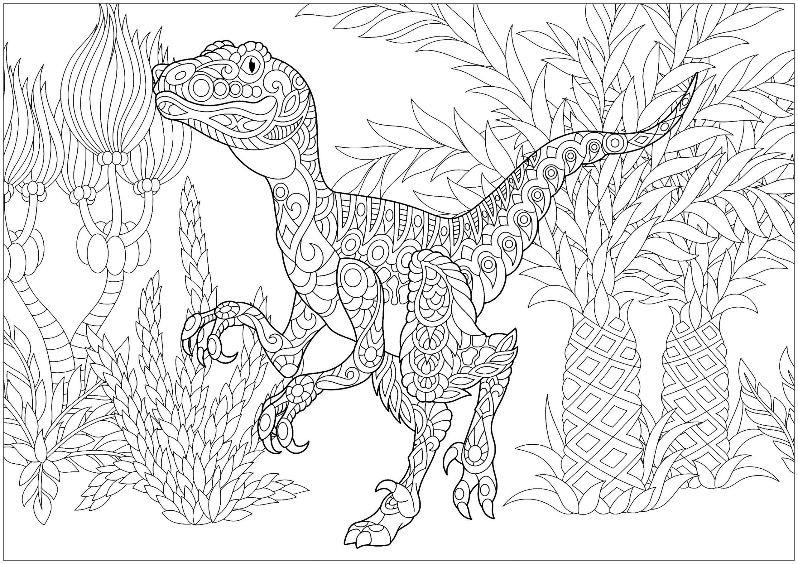 Dinosaurier 62526 - Dinosaurier - Malbuch Fur Erwachsene bestimmt für Mandala Dino