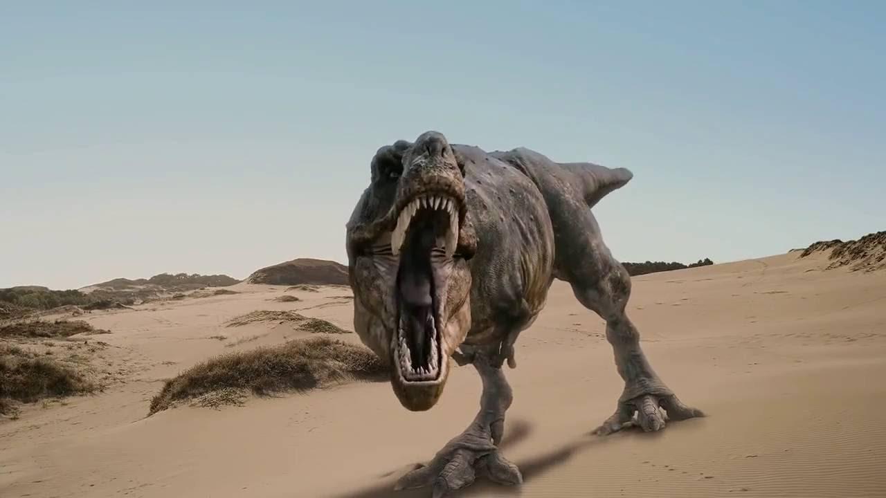 Dinosaurier Fossilien Zum Leben Erweckt Doku Hd verwandt mit Bilder Von Dinosauriern