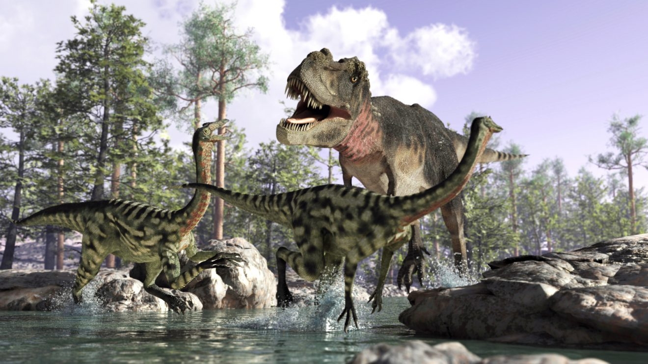 Dinosaurier - Riesen Der Urzeit - Wissenschaft.de bei Bilder Von Dinosauriern