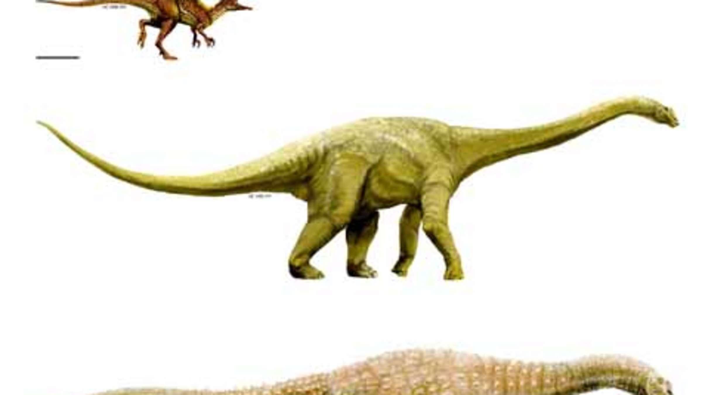Drei Neue Dinosaurier-Arten In Australien Entdeckt   Welt bei Dinosaurier Namen Und Bilder