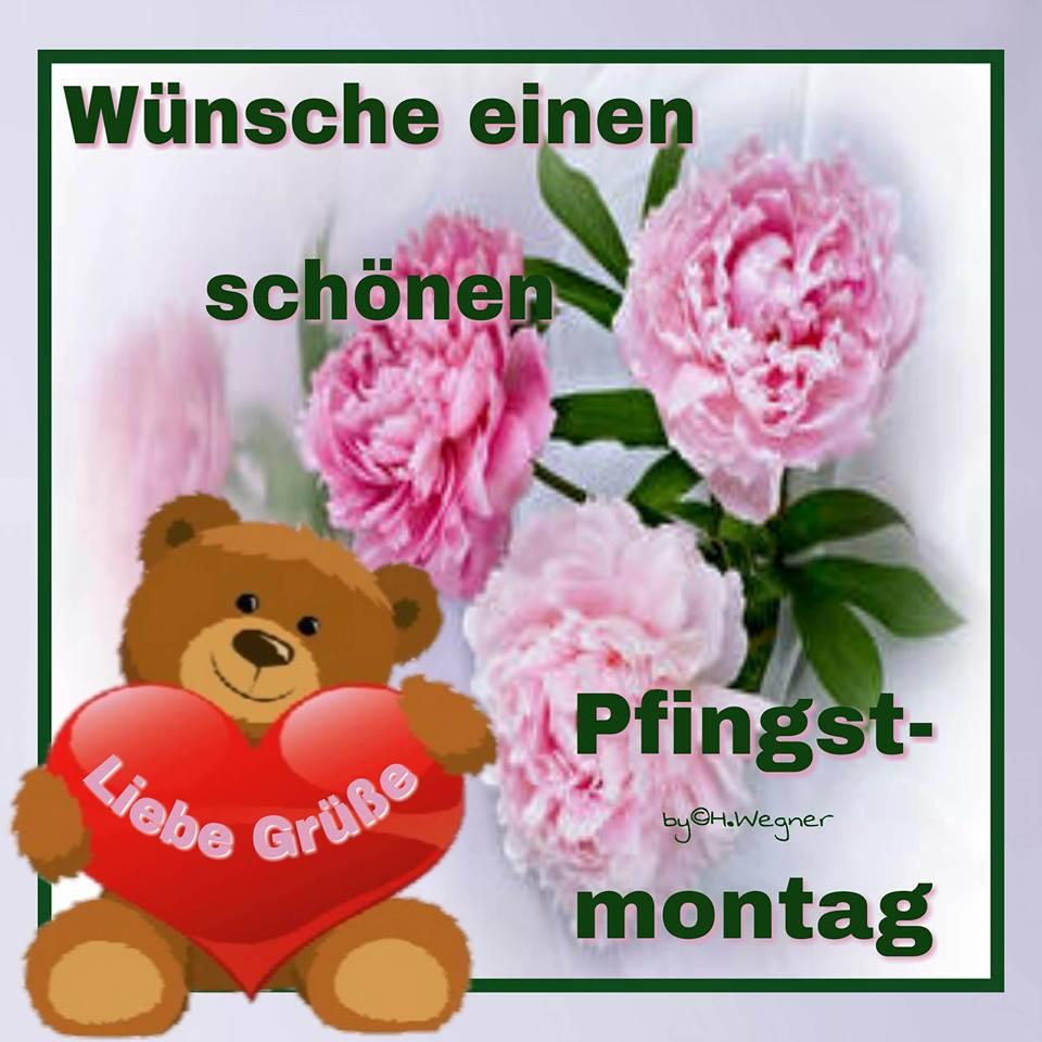 ᐅ Pfingstmontag Bilder - Pfingstmontag Gb Pics - Gbpicsonline in Lustige Blumenbilder