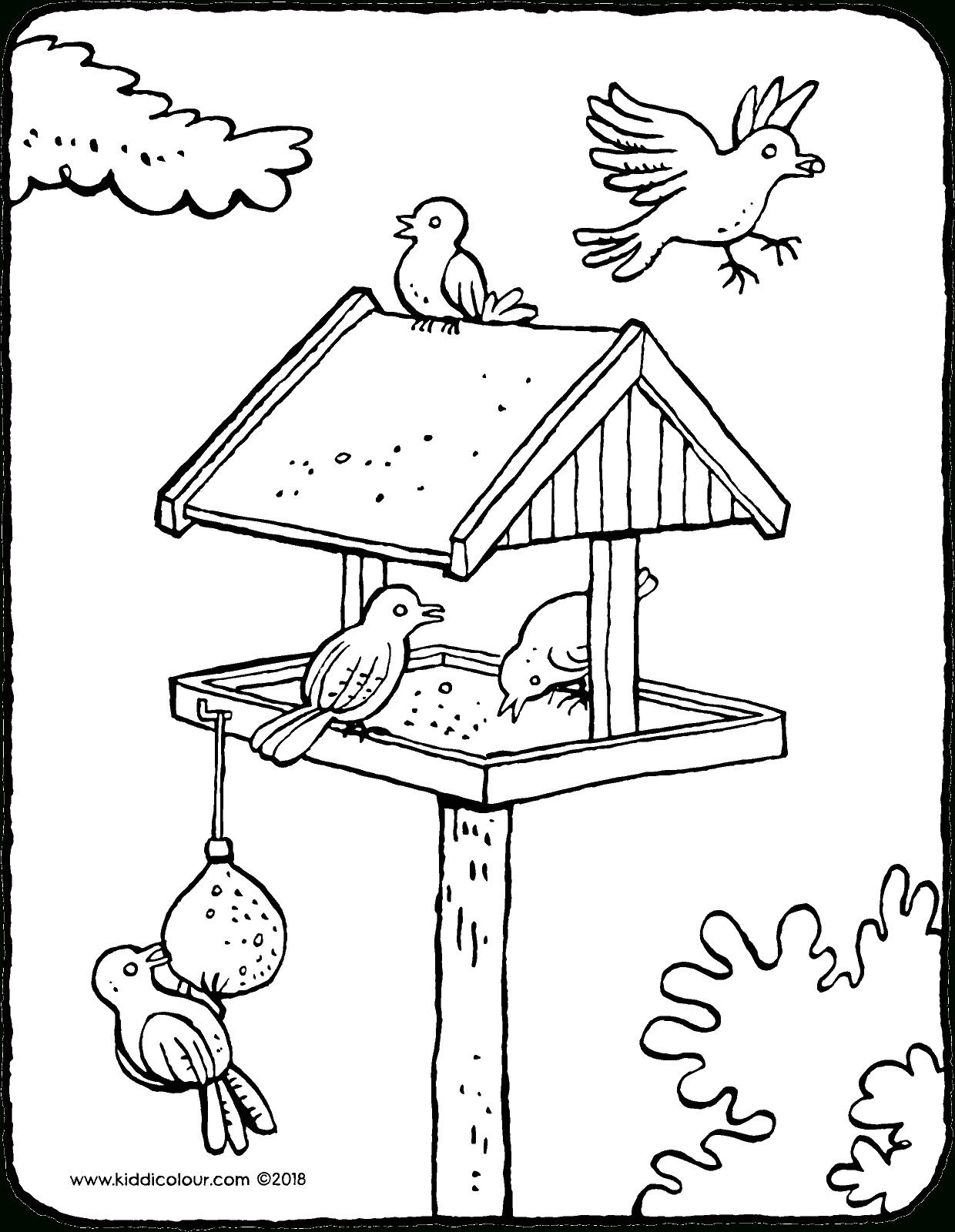 Ein Vogelhaus Mit Vögeln - Kiddimalseite innen Malvorlagen Vögel
