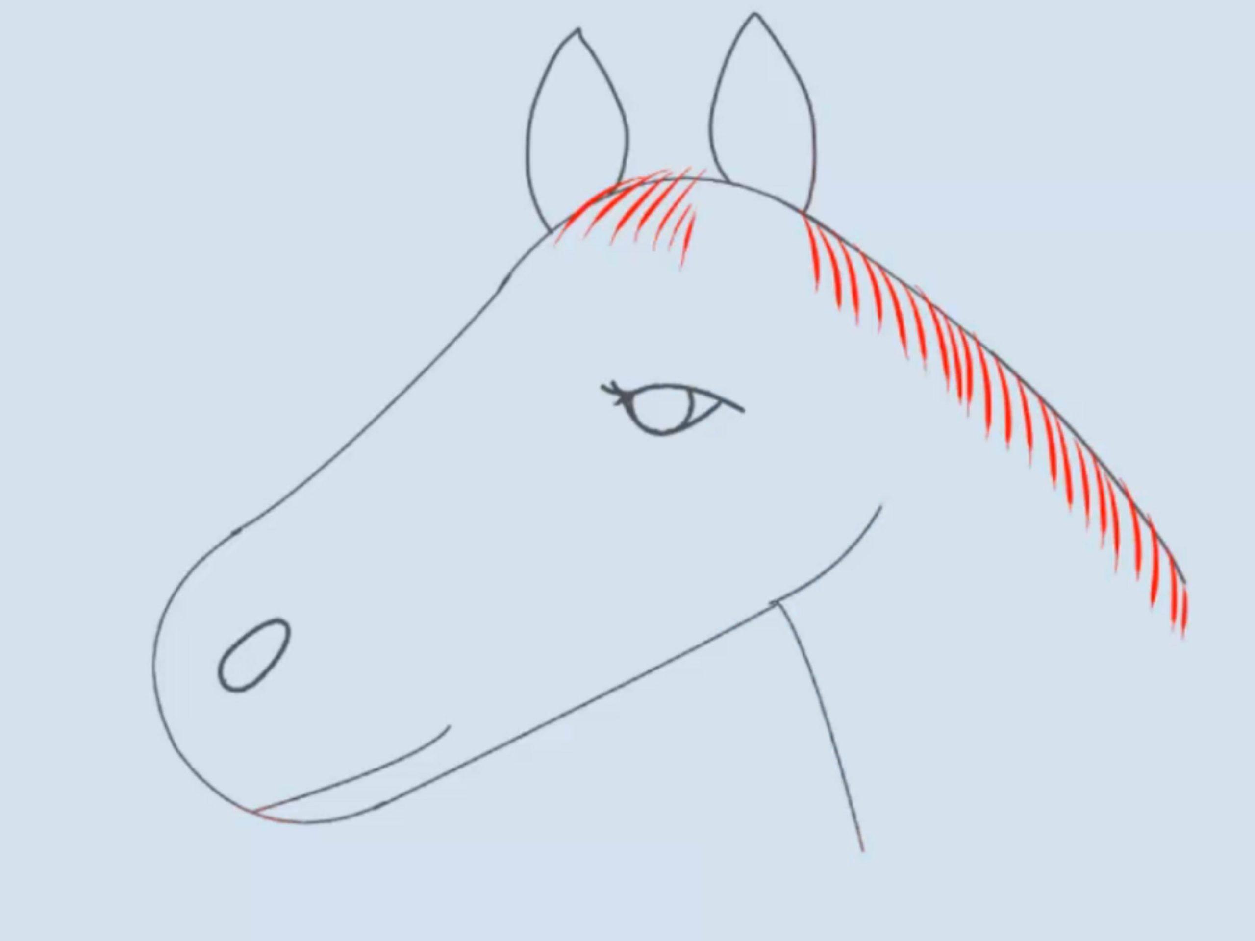 Einen Pferdekopf Zeichnen: 15 Schritte (Mit Bildern) – Wikihow bei Pferdekopf Malen