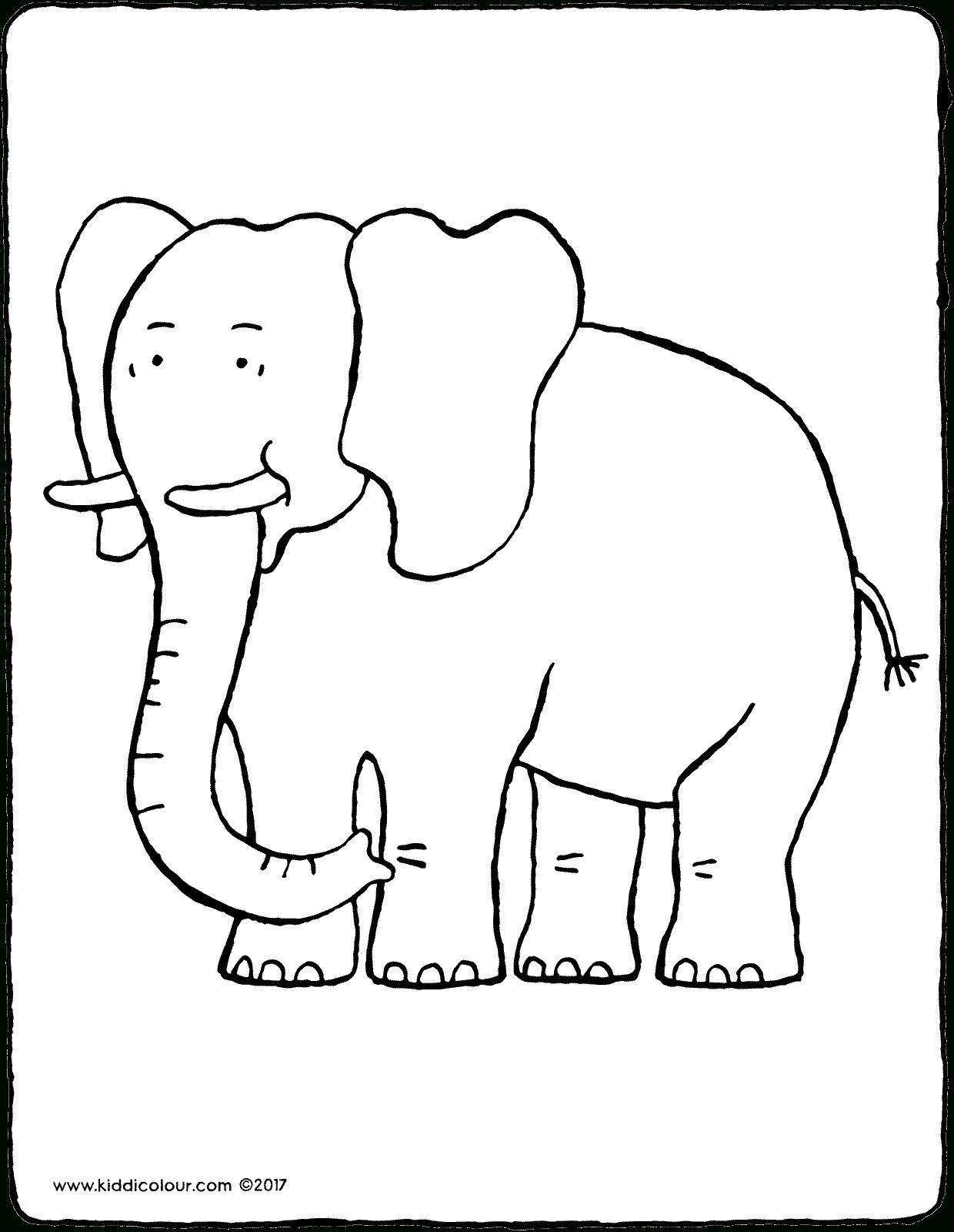 Elefant - Kiddimalseite ganzes Malvorlage Elefant