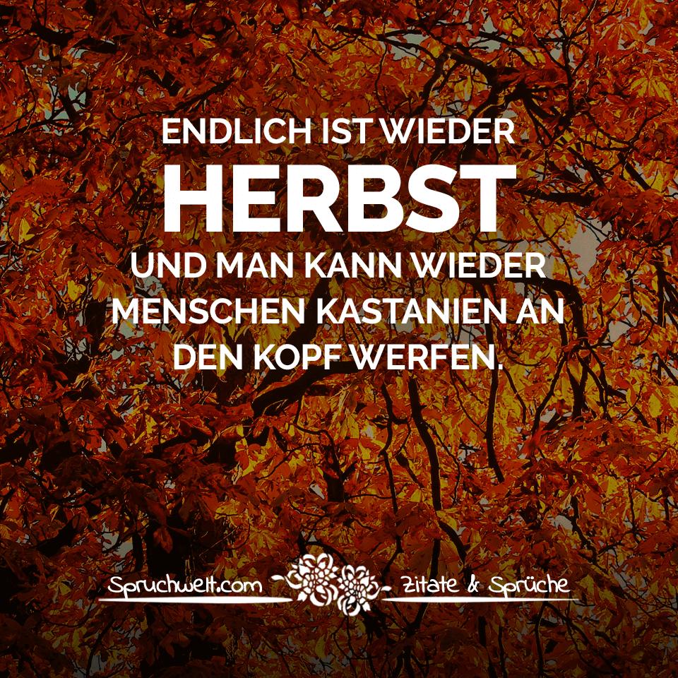 Endlich Ist Wieder Herbst Und Man Kann Wieder Menschen bei Lustige Bilder Herbst
