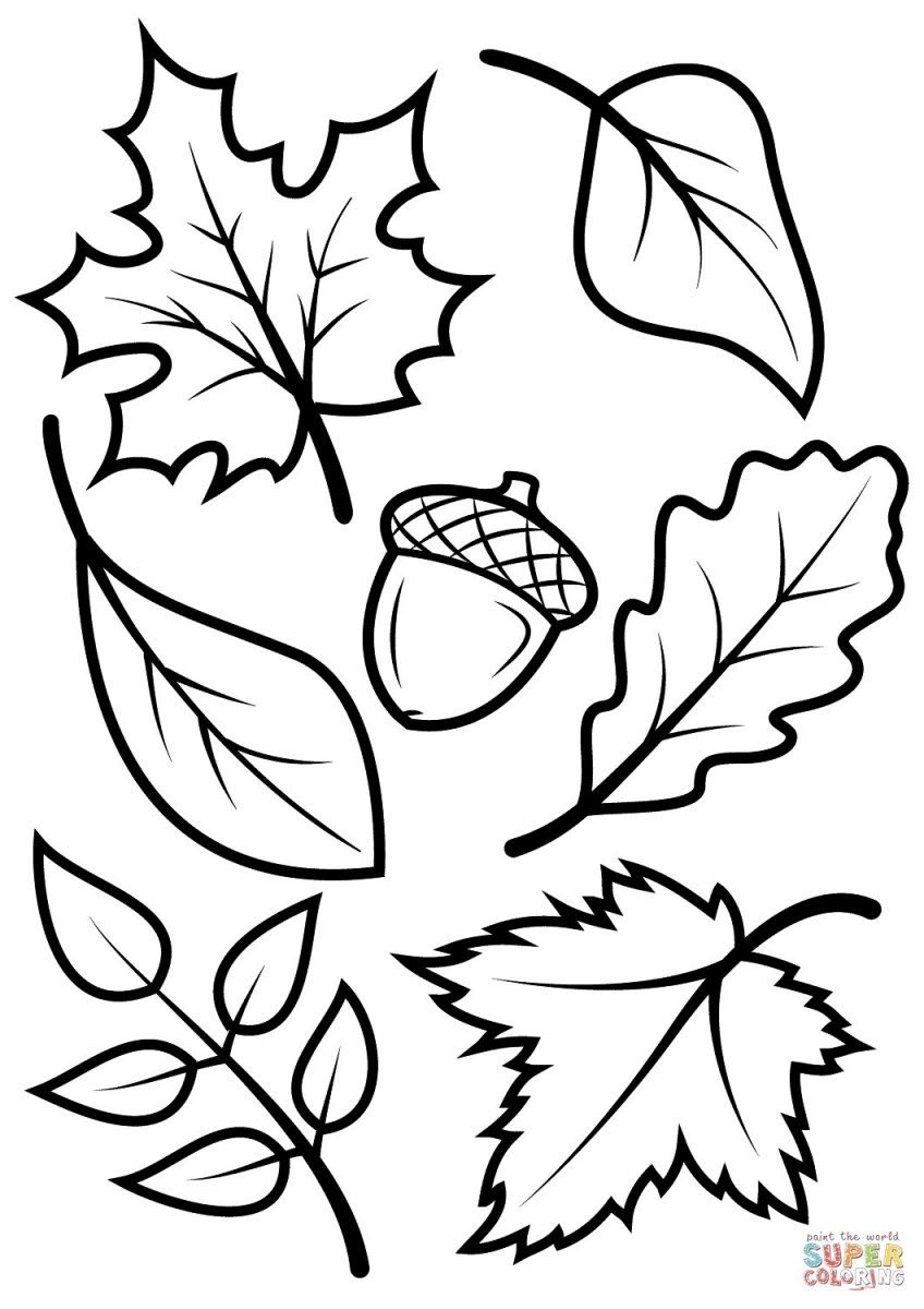 Fall Coloring Pages For Kids Fall Leaves And Acorn Coloring ganzes Herbstblätter Malvorlagen
