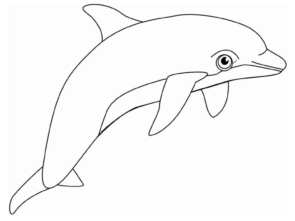 Free Printable Dolphin Malvorlagen Für Kinder | Malvorlagen bei Delfin Schablone