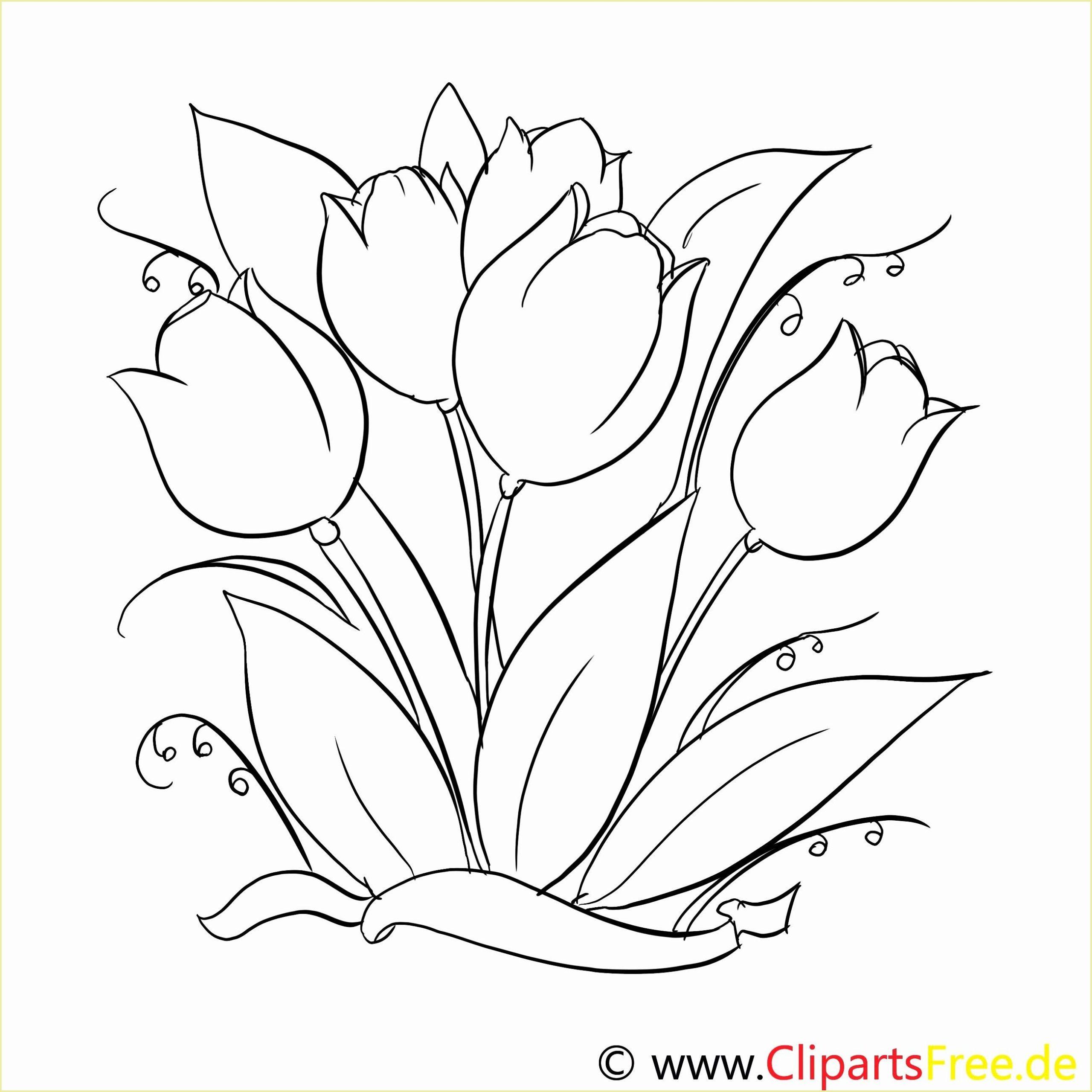 Frisch Malvorlagen Blumen Zum Ausdrucken | Blumenzeichnung innen Blumen Malvorlagen Kostenlos