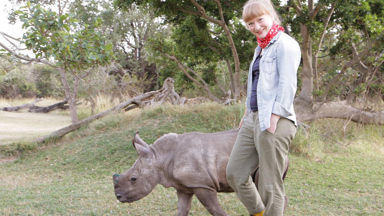 Ganz Nah Am Nashorn | Paula Und Die Wilden Tiere über Tiere Mit Y Am Anfang