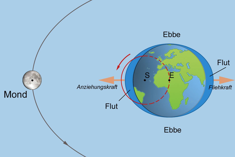 Gezeiten, Ebbe Und Flut | Erde Und Natur | Geografie | Goruma innen Was Hat Der Mond Mit Ebbe Und Flut Zu Tun