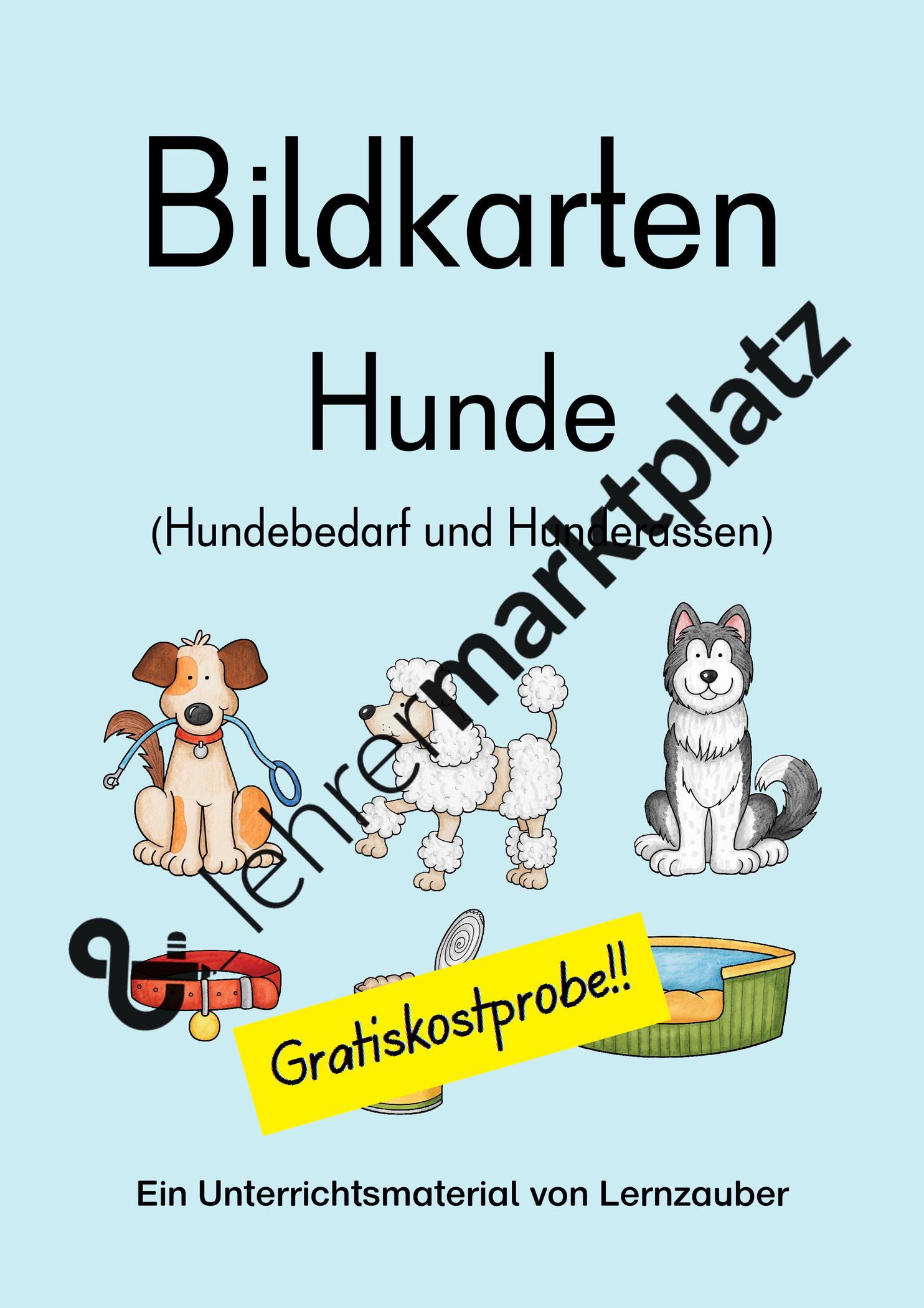 """Gratiskostprobe Zu Meinem Material """"bildkarten: Hunde"""".das verwandt mit Hunderasse 7 Buchstaben"""