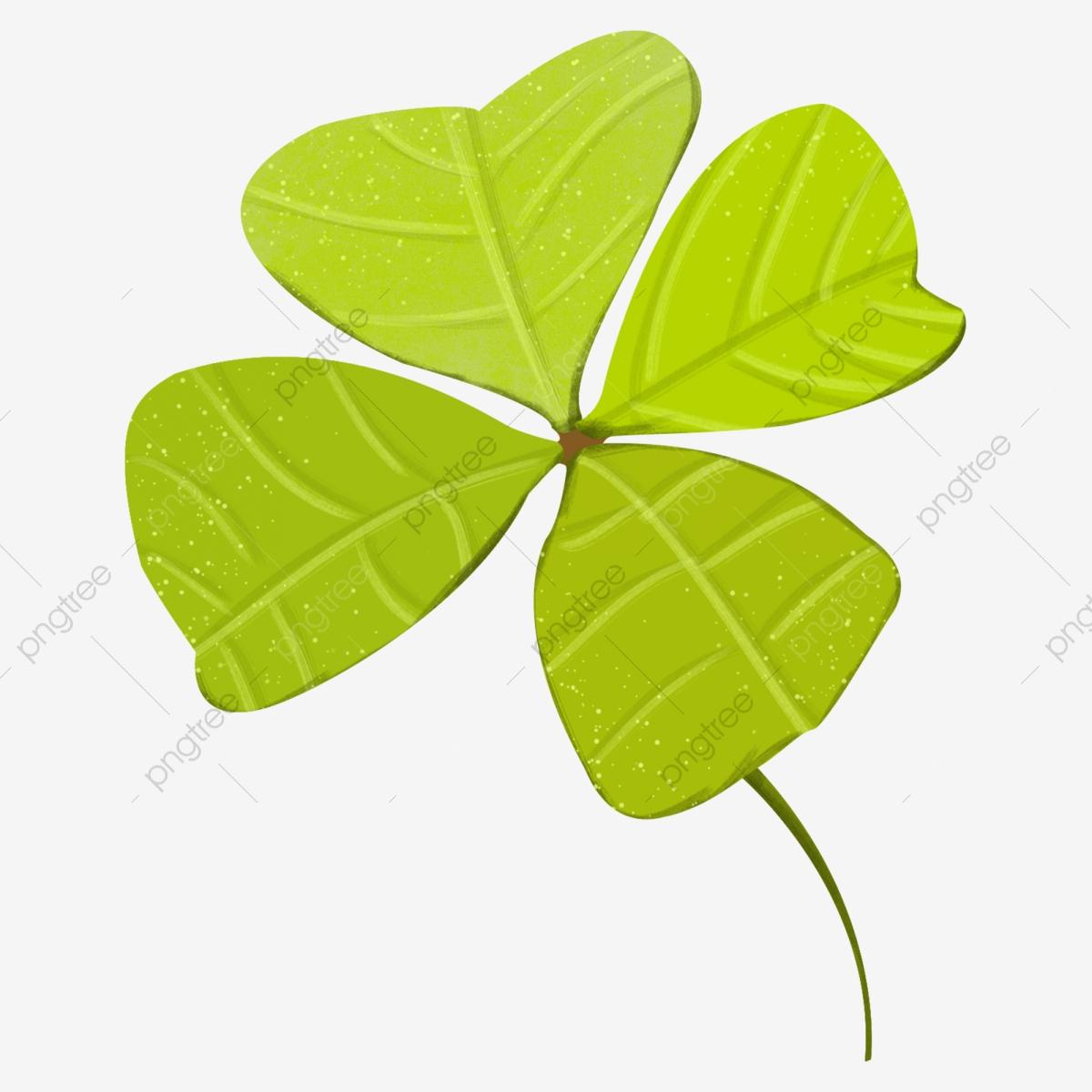 Grün Vierblättriges Kleeblatt Glücksklee Abbildung, Pflanze verwandt mit Glücksklee Vorlage