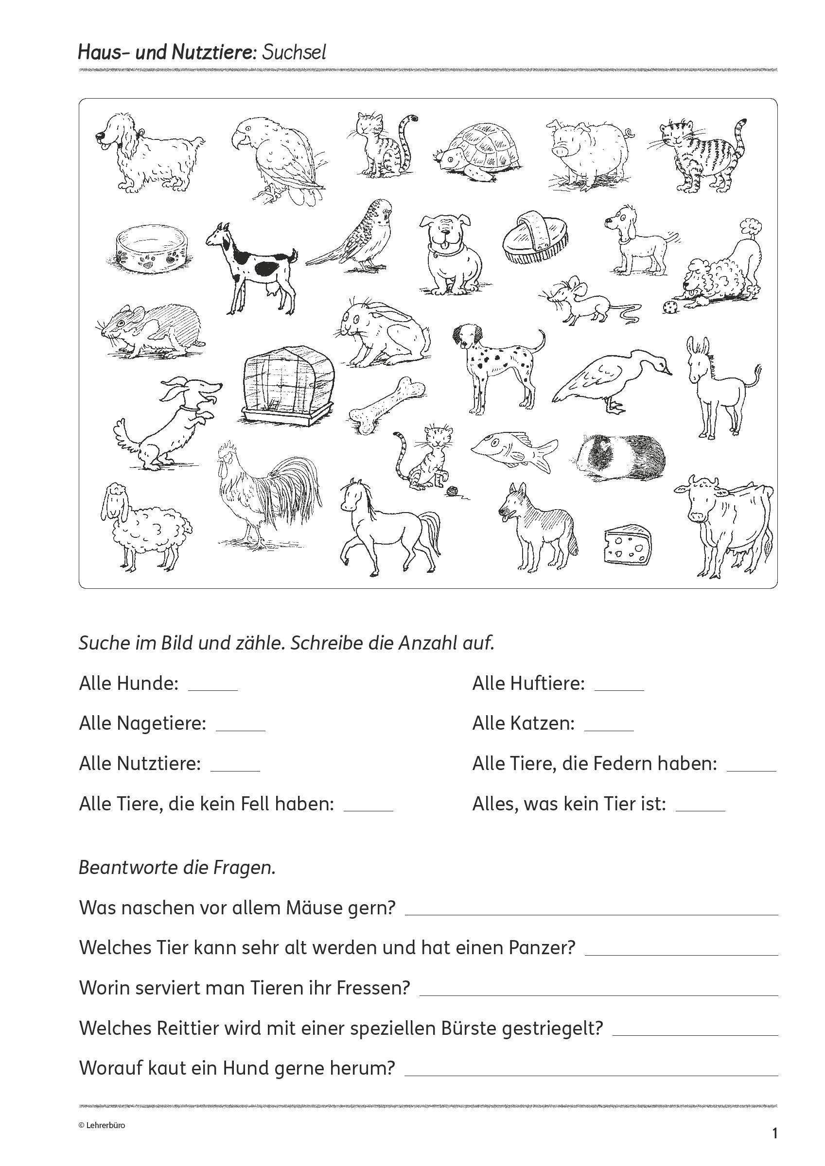 Grundschule Unterrichtsmaterial Fächerübergreifend Visuelle über Kinderrätsel Tiere