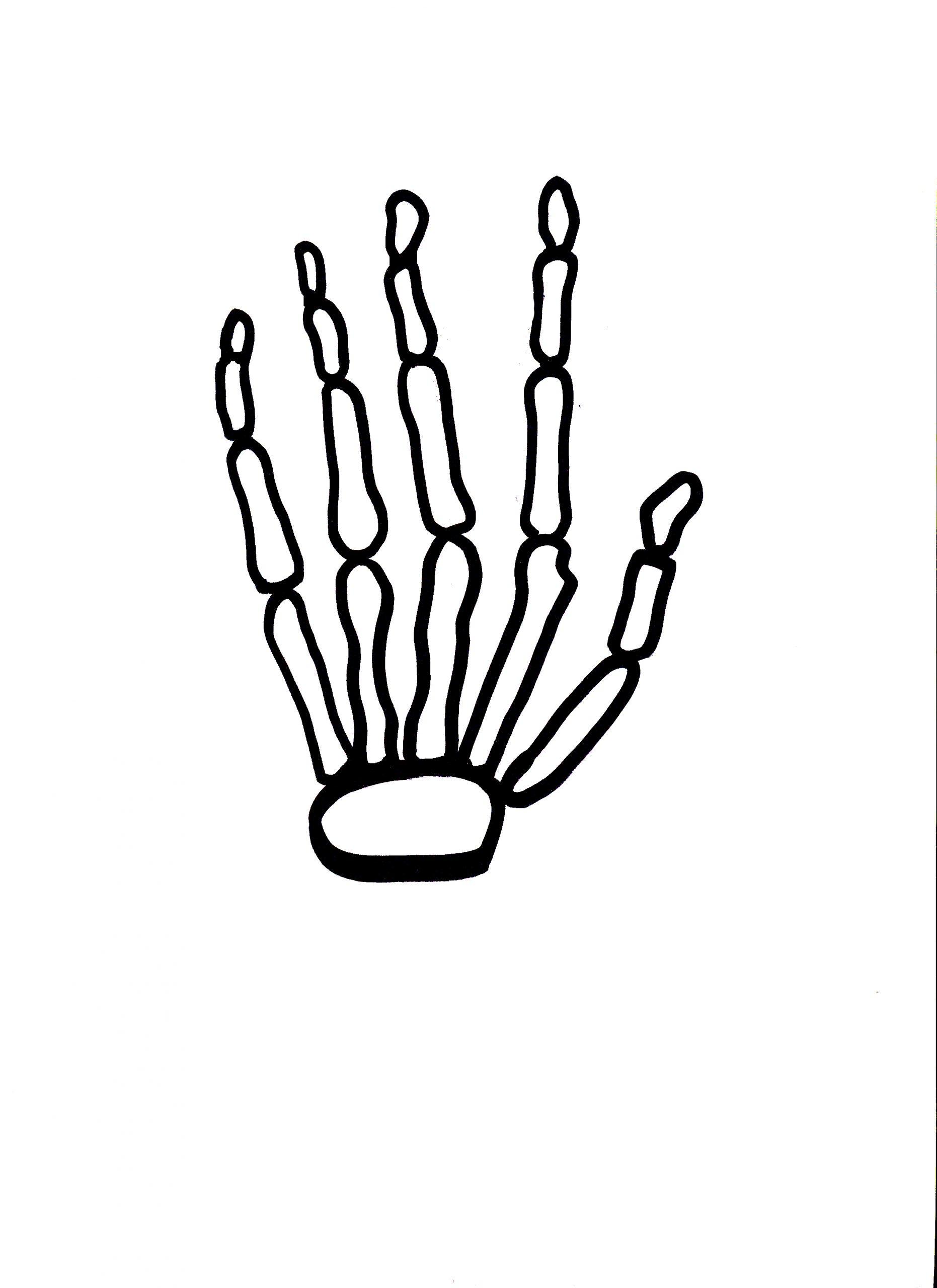 skelett ausdrucken  kinderbilderdownload  kinderbilder