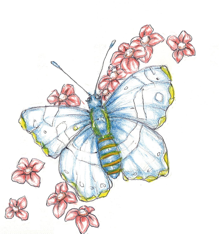 Hallo Welt   Halli Halli Hallo bei Schmetterling Du Kleines Ding Such Dir Eine Tänzerin