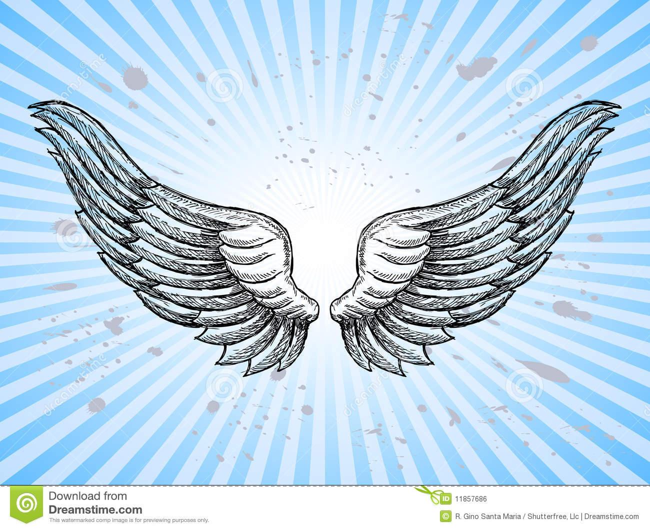 Hand Gezeichnete Flügel Vektor Abbildung. Illustration Von bestimmt für Engelsflügel Gezeichnet
