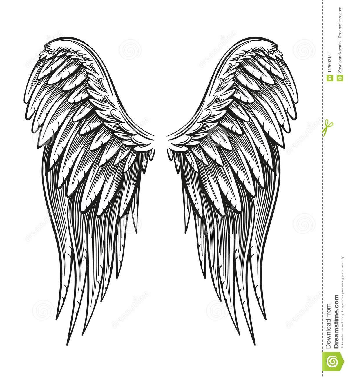 Hand Gezeichnete Flügel Vektor Abbildung. Illustration Von innen Engelsflügel Gezeichnet