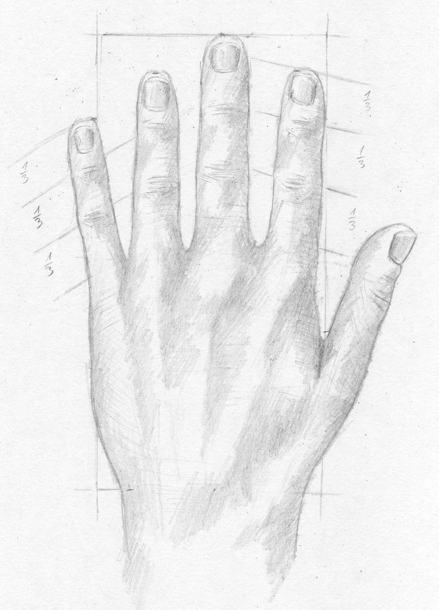 Hand, Hände Und Finger Zeichnen Lernen - Zeichenkurs mit Hände Zeichnen Lernen