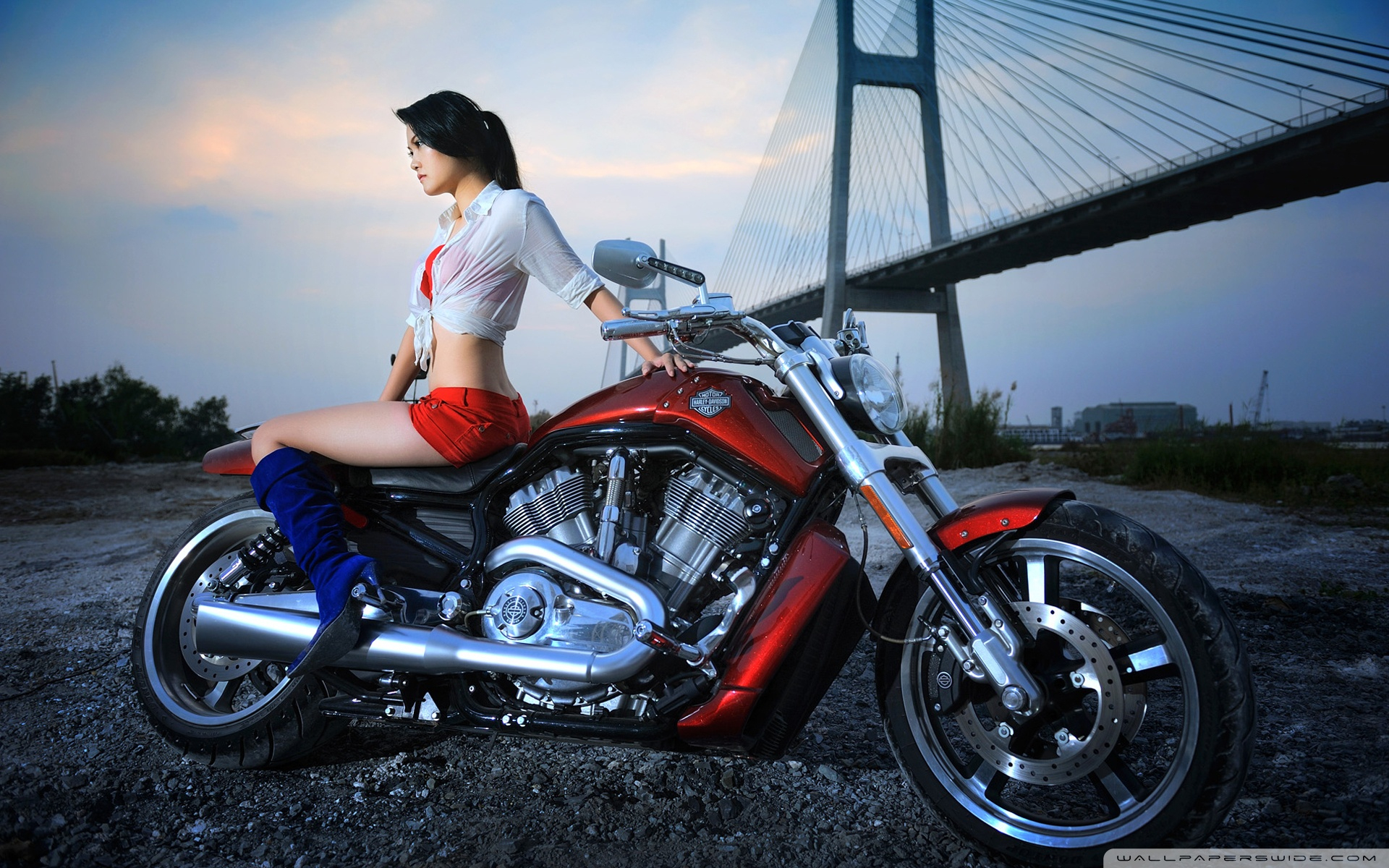 Harley Davidson Hintergrundbilder | Harley Davidson Frei Fotos bestimmt für Harley Davidson Hintergrundbilder