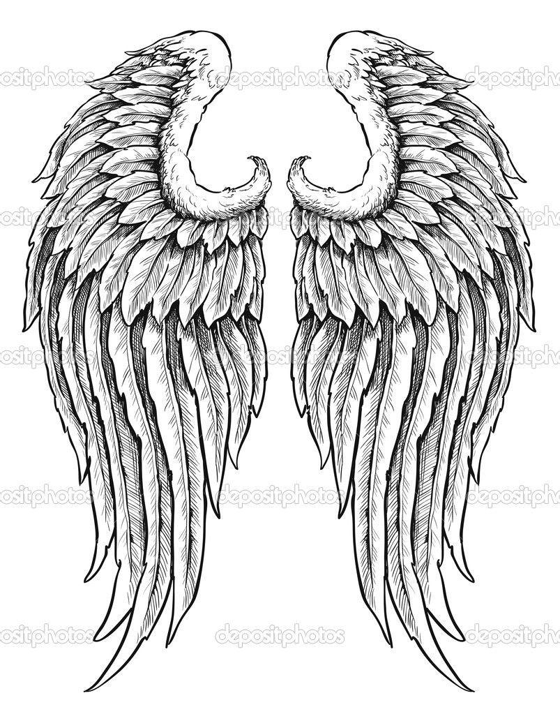 Herunterladen - Hand Gezeichneten Engel Flügel in Engelsflügel Gezeichnet