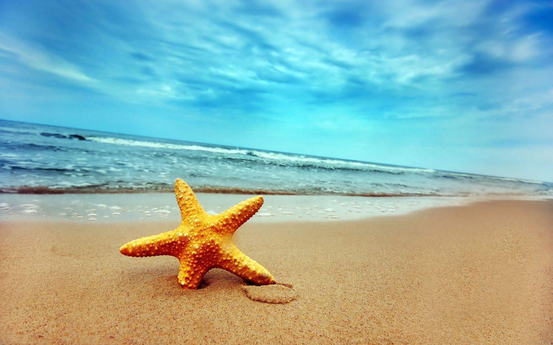 Hintergrundbilder Sommer Kostenlos verwandt mit Sommerbilder Kostenlos