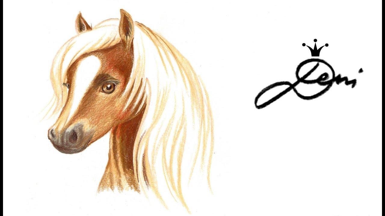 Horse Drawing 🐴 Pferd Zeichnen 🎨 Pferdekopf Malen 🐴 Рисува Кон ✏️  Haflinger Speeddrawing 马 mit Pferdebilder Zum Malen