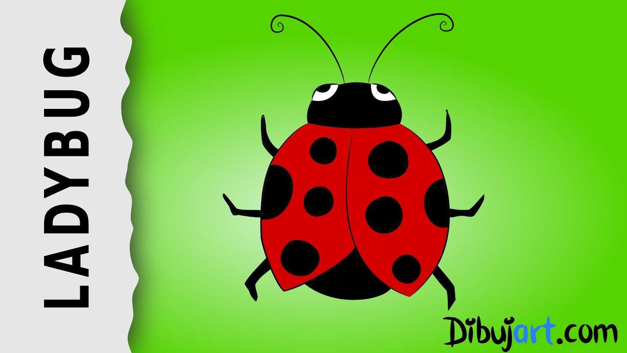 How To Draw A Ladybug — Wie Zeichnet Man Einen Marienkäfer ganzes Marienkäfer Selber Zeichnen