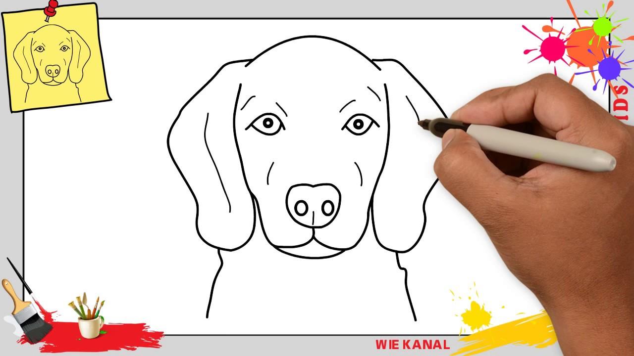 Hund Zeichnen (Gesicht) 4 Schritt Für Schritt Für Anfänger & Kinder -  Zeichnen Lernen in Kinder Zeichnen Lernen